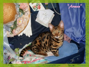 Arwen, cute look
