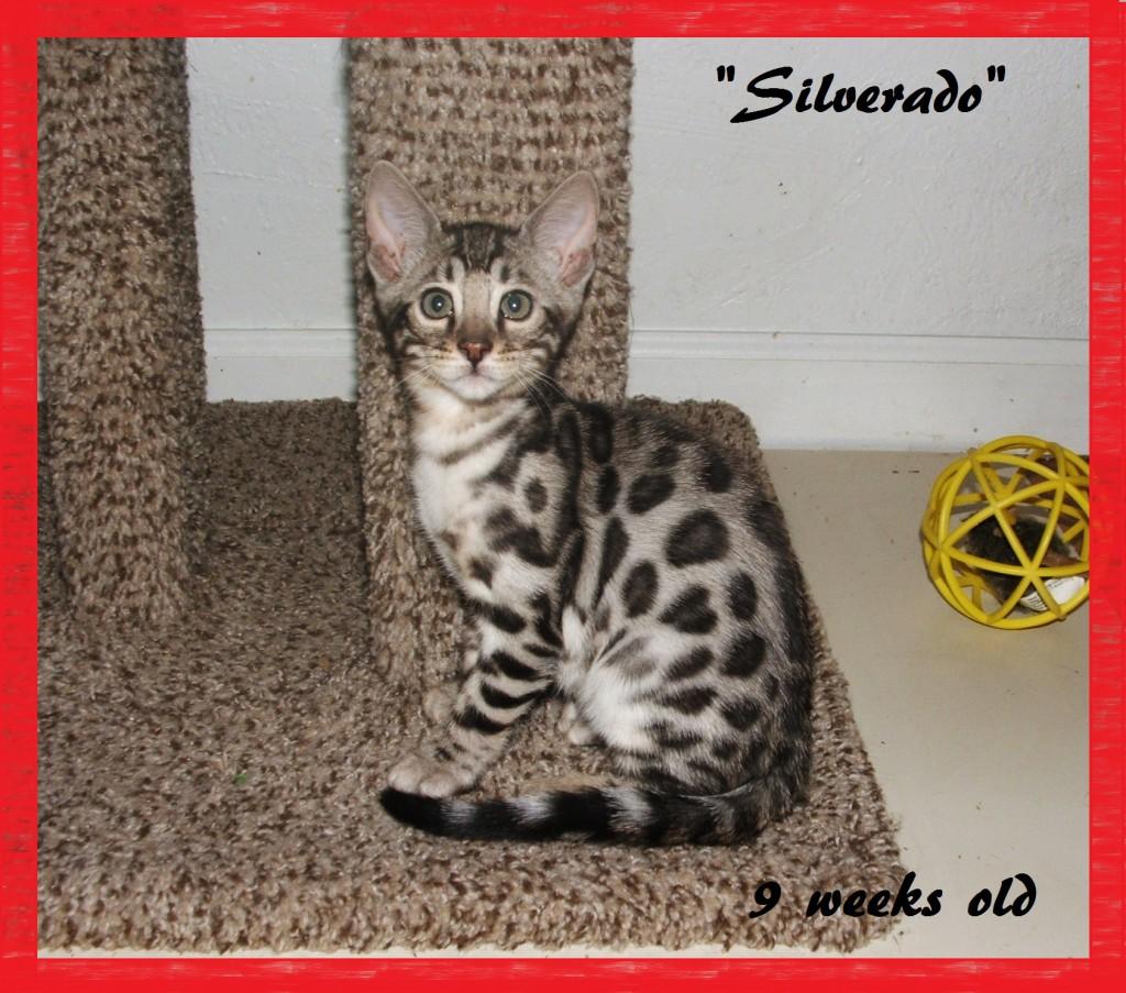 Silverado, left side