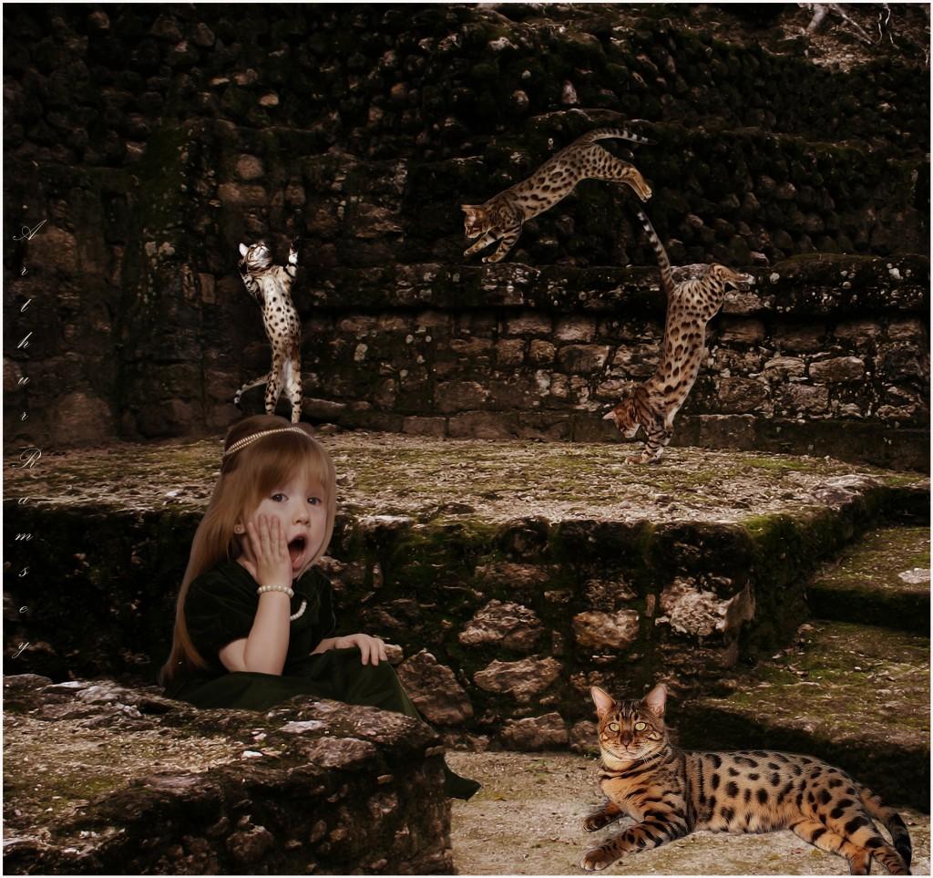 hugecats (2)